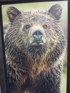 Mangelson bear